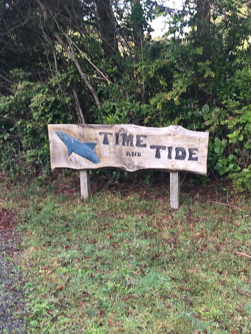 Where the time meets the tide
