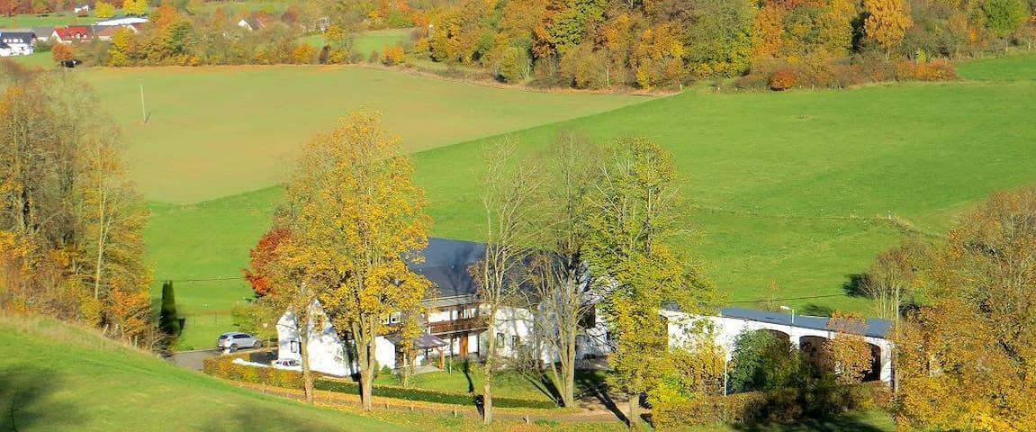 Eifelsonne: FeWo in der Vulkaneifel - Hohenfels-Essingen - Appartement