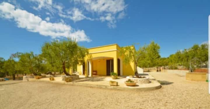 Villa AROSA ,immersa negli ulivi del Salento