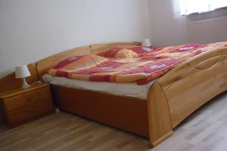 Doppelbett sucht Belegung - Dreieich - Dom