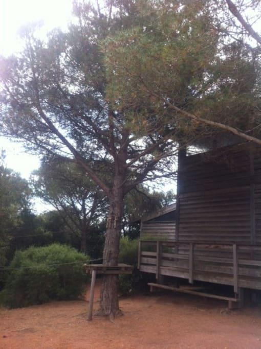 salle de mariage 2 jours sans logement cabanes dans les arbres louer le muy provence. Black Bedroom Furniture Sets. Home Design Ideas
