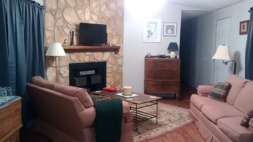 Charming abode-cozy, clean and convenient to Okemo - Mount Holly