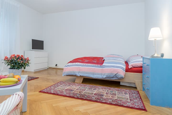 Beautiful City Center Apartment - Zürich - Lejlighed