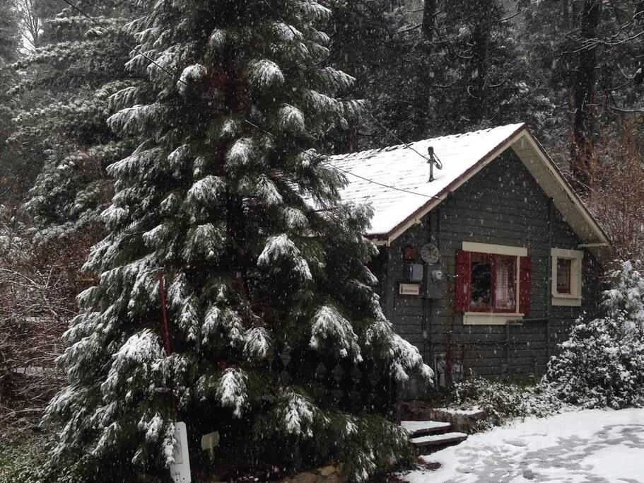 1930s cozy one bedroom lake arrowhead cabin houses for for Cabins in lake arrowhead ca