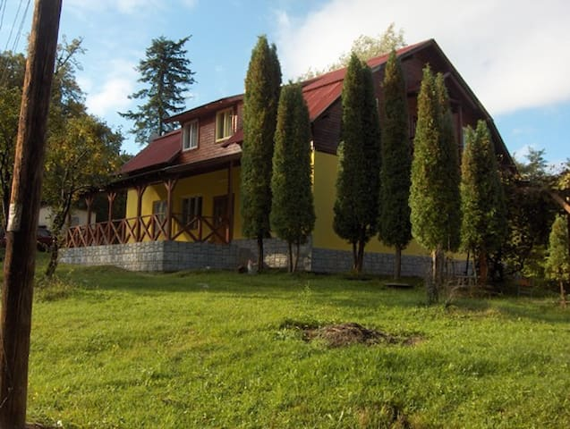 Rental house with pool in Maramures