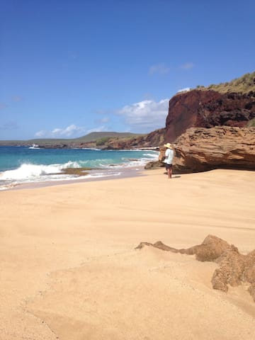 Stunning Private beachs!Steps to White sand,hikes!