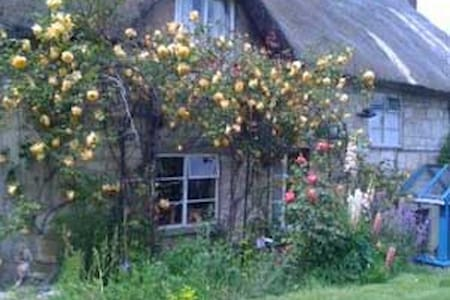 Cosy 2BD in 17th C Thatched Cottage - Tisbury - Bed & Breakfast