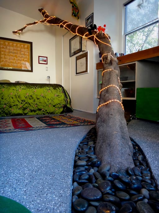 One of a kind: Experience a studio built around a tree