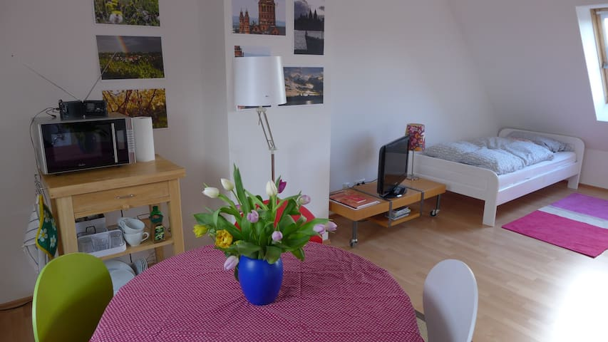 Bright and Clean Rooftop Apartment, Own Bathroom - Mainz - Řadový dům
