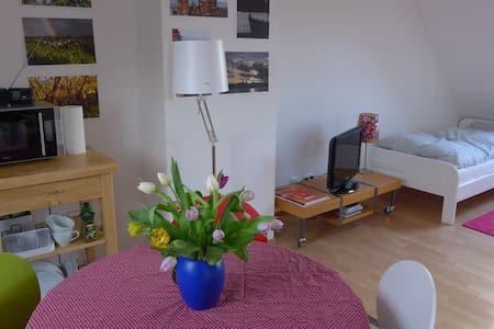 Bright and Clean Rooftop Apartment, Own Bathroom - Mainz