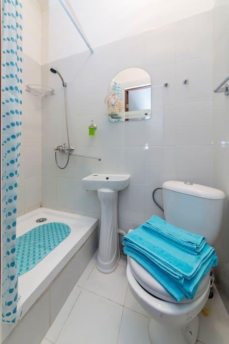 Туалет и душ в стандартном номере