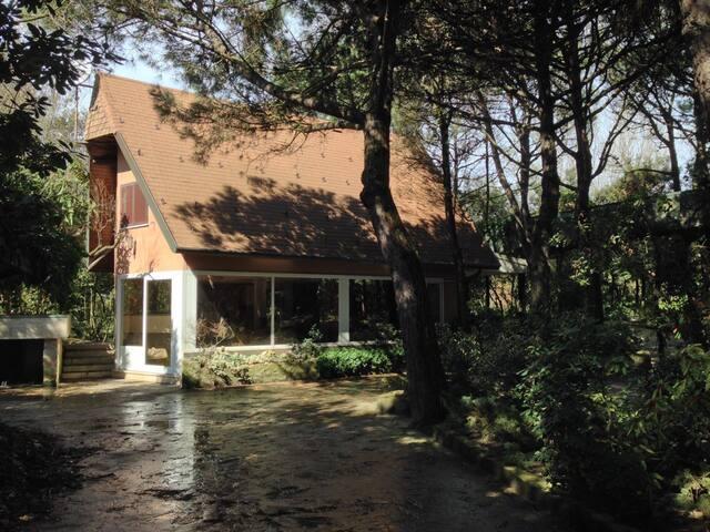 Charming villa - Isola Albarella - Casa