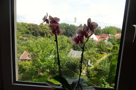 Zentral, grüne Aussicht, ruhig  - Regensburg - Apartment