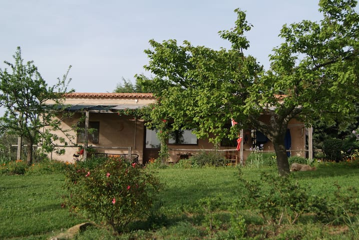 Tranquillità in campagna - Montorgiali - Apartamento
