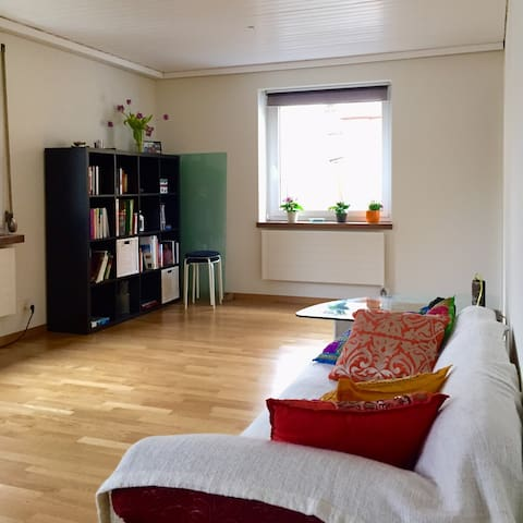 Breakfast and parking spot included - Alfa - Sankt Gallen - Apartamento