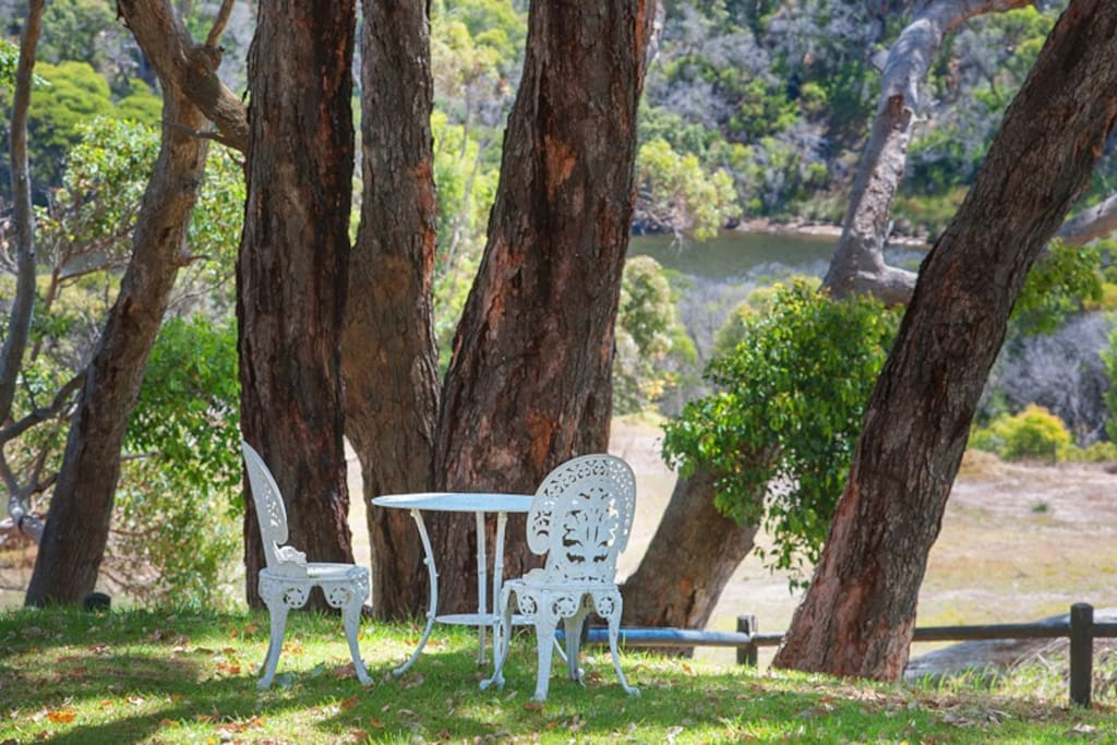 Have a picnic under the Marri trees near the river
