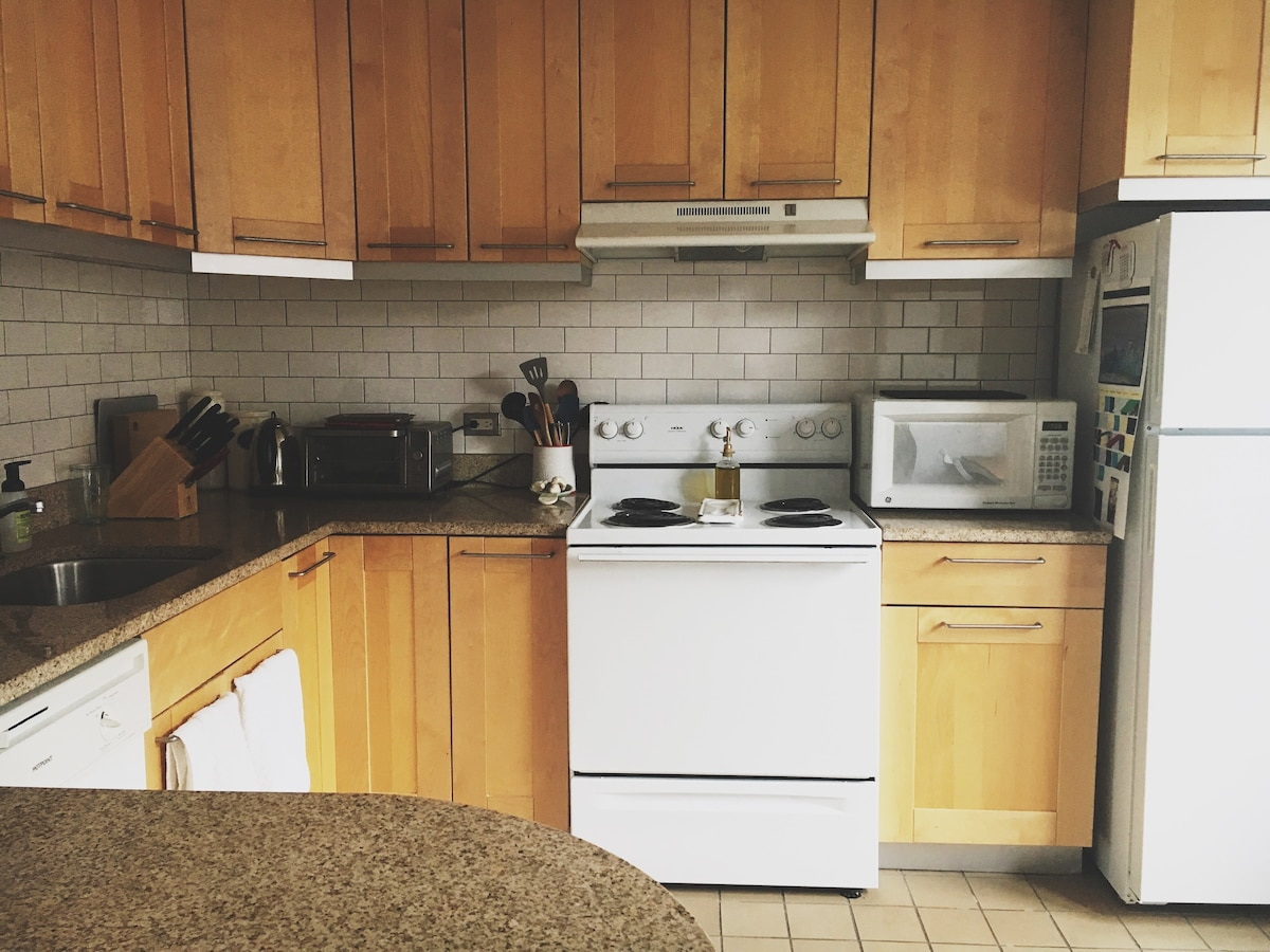 Hyde Park Hideaway near University of Chicago Apartments for