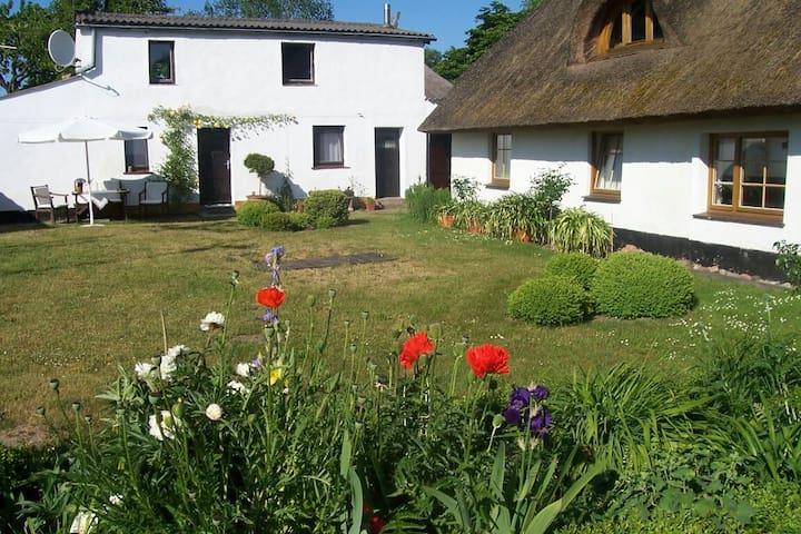Ursprüngliches Rügen - Neuenkirchen - Huoneisto