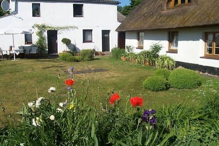 Ursprüngliches Rügen - Neuenkirchen