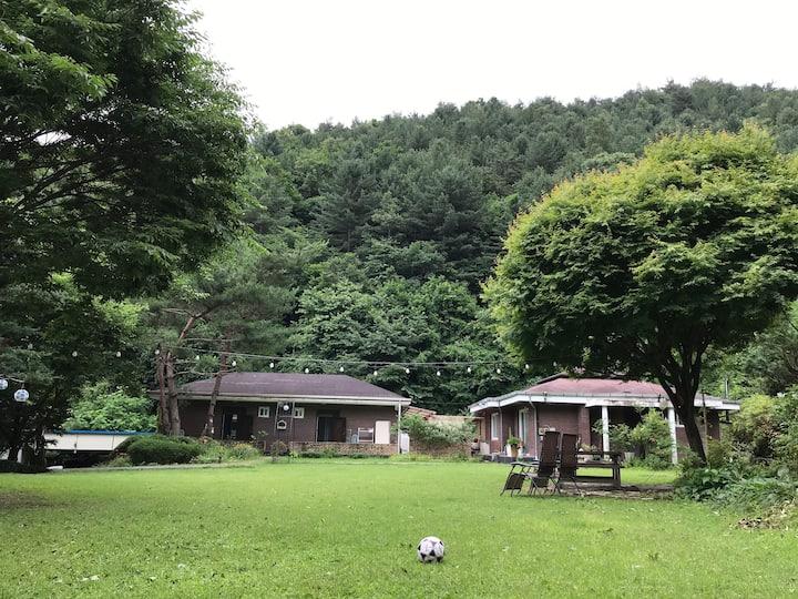 기쁨의 숲/희림 2