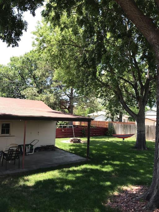 Backyard, plenty of shade from hackberry trees