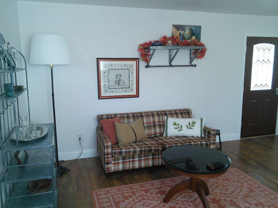 Living area with a sleeper sofa.