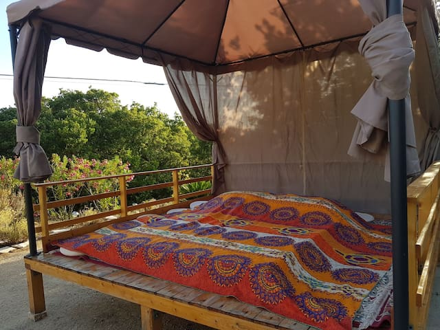 Exotic sleeping in the wood near Olbia