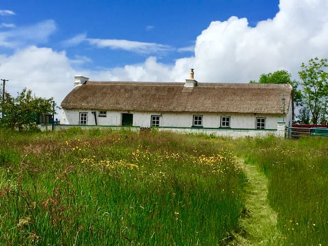 Cosy Thatched Cottage nr Coast: Log Stove, Paddock