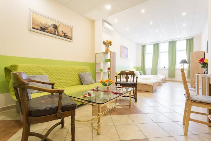 City Center Apartment ★ Air-conditioning & Wi-fi ★