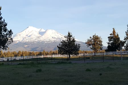 Marvelous Modular Majestic Mt Shasta