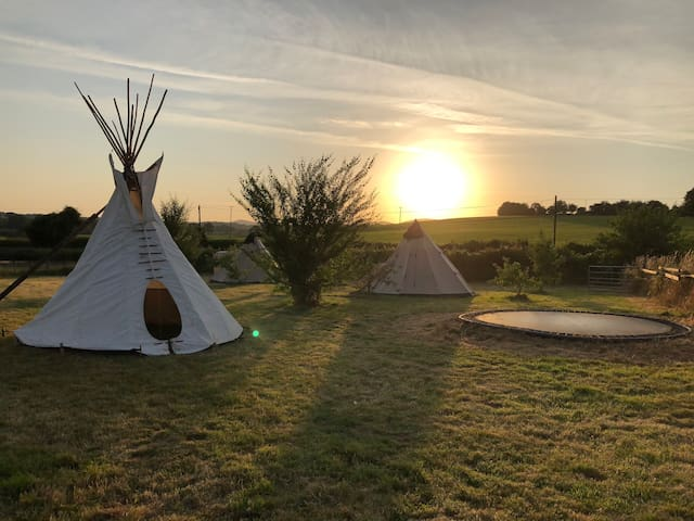 Sunrise at South Field Pegs Farm Glamping