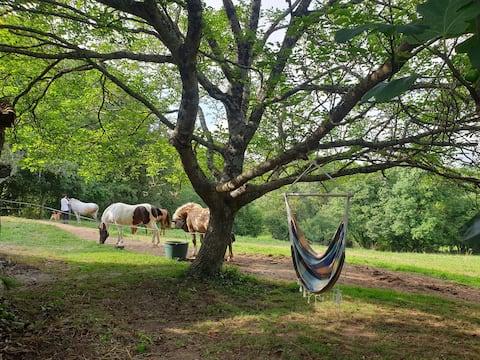 Tente Tipi dans ferme equestre