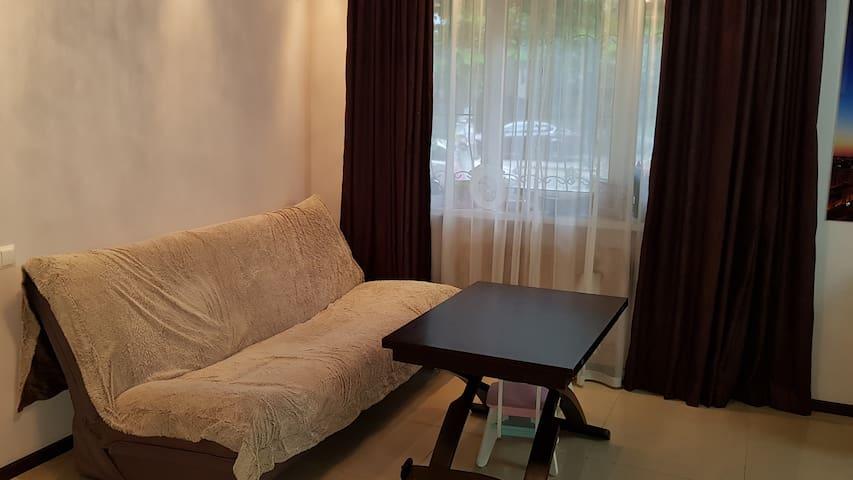 Квартира студия со спальней.