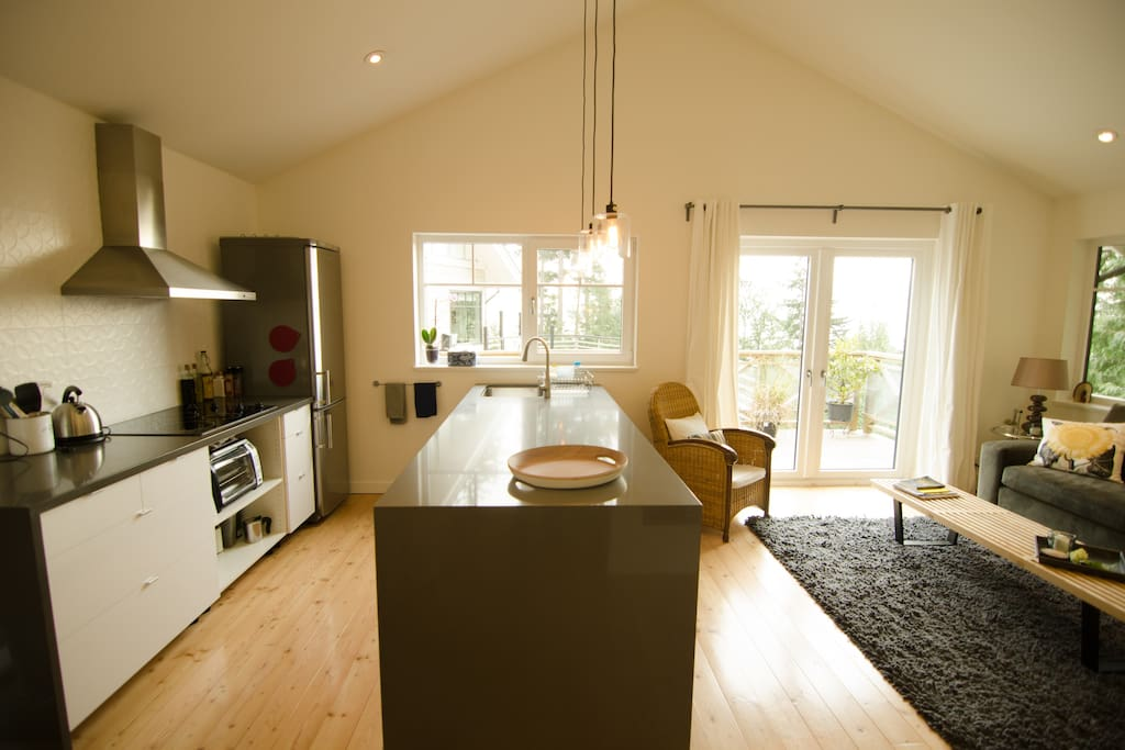 kitchen with dishwasher and all the cooking facilities you want
