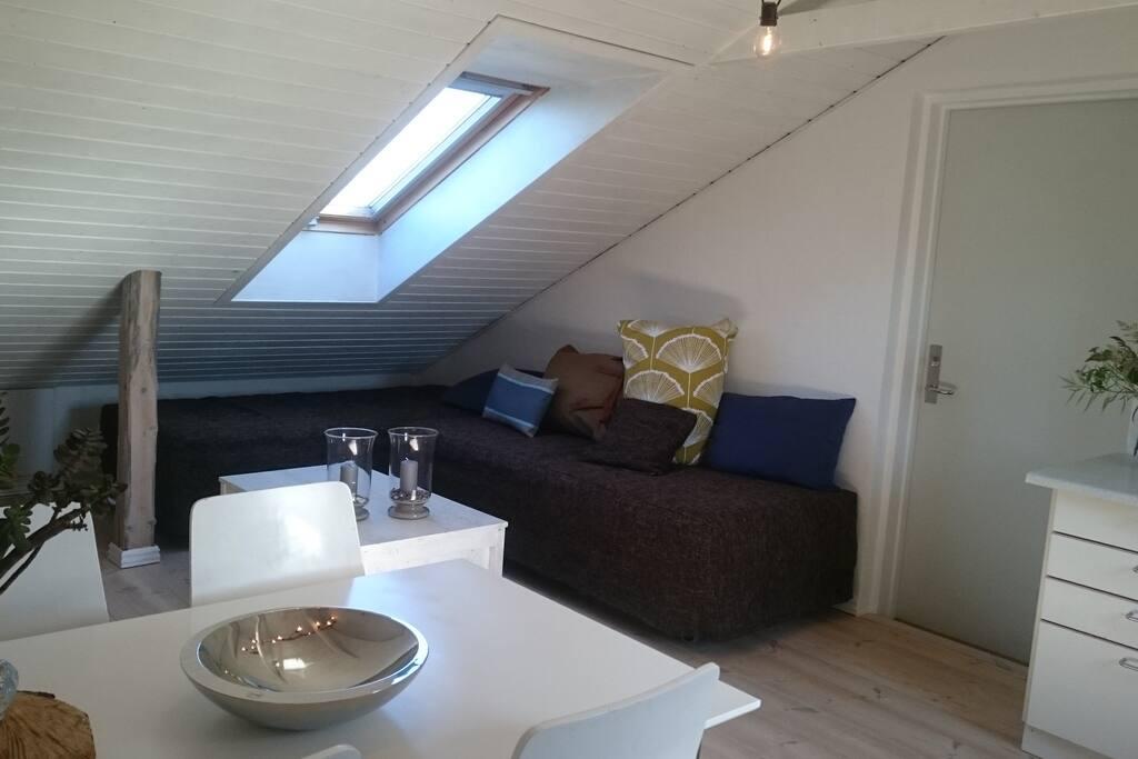 Indgang/køkken/stue/mulighed for 2 ekstra sovepladser