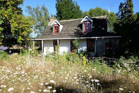 Paradise at Aspbridge Cob Cottage - Spring Grove - Nelson