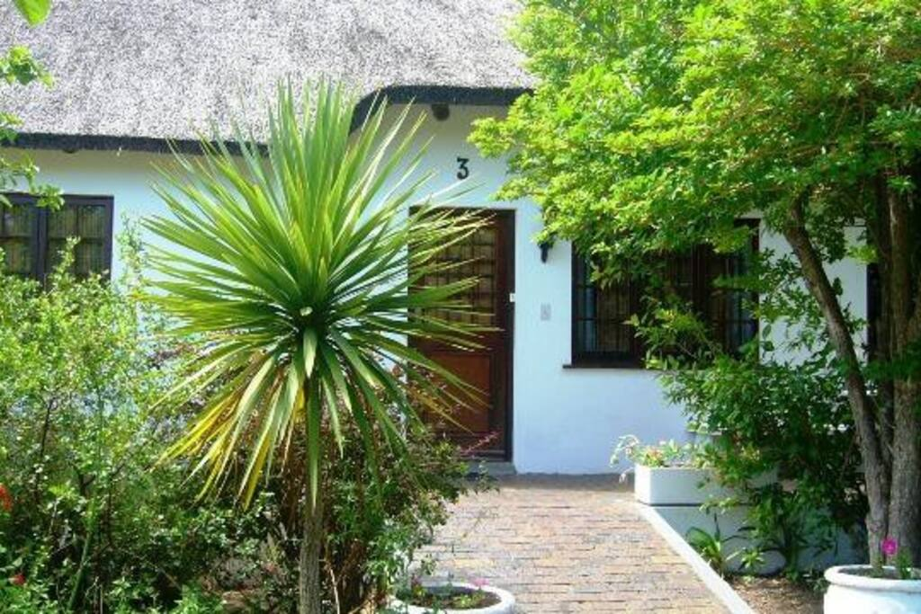 The front of our traditional Cape Dutch house