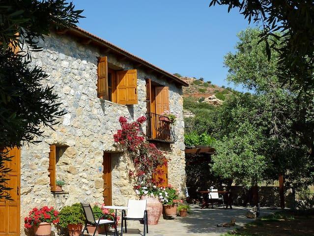 Manolis House, Agia Paraskevi,Crete - Agia Paraskevi - Villa