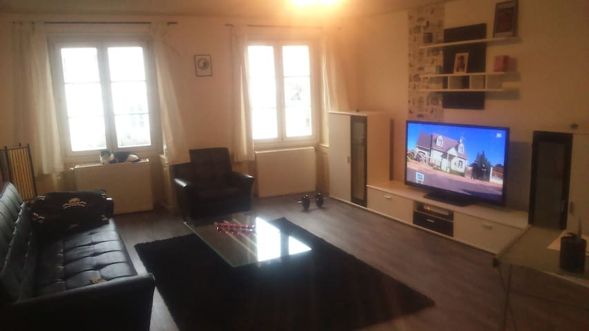 Appartement F2 Basel world 2015 - Altkirch - Apartment