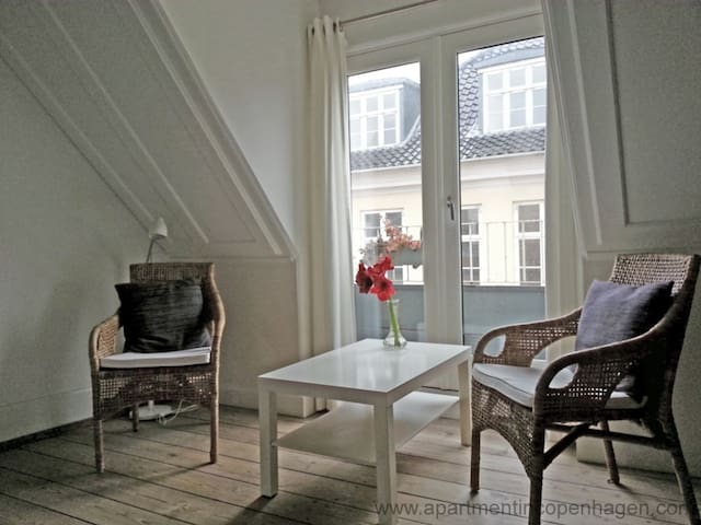 Down Town Copenhagen - Absolute Center - Cozy - Centrally Located One Bedroom (298-1)