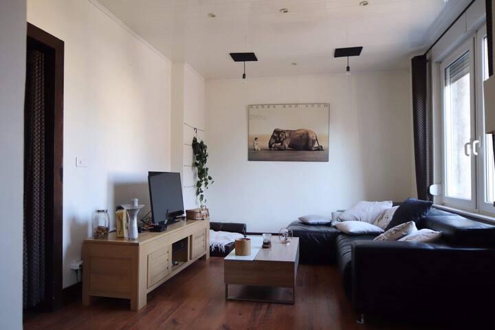Grand duplex 3 chambres avec jardin et  abri moto