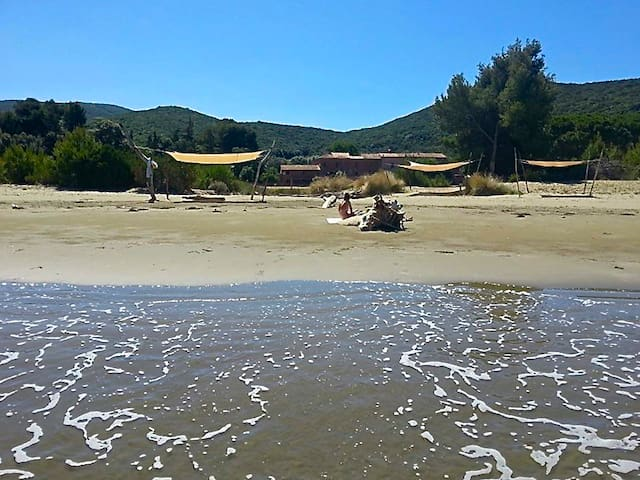 Unique location for nature & solitary beach lovers - Talamone - Apartamento