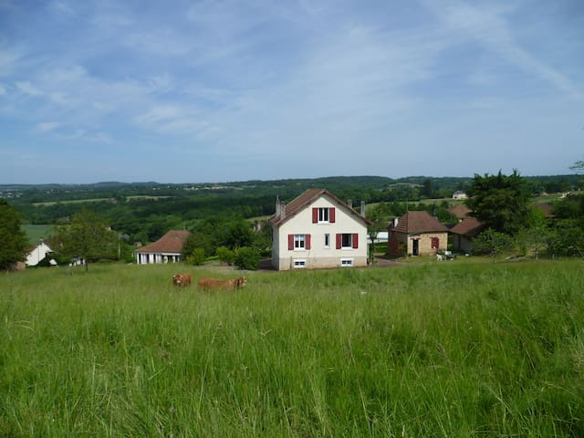 B&B, double room - Beauregard-de-Terrasson - Bed & Breakfast