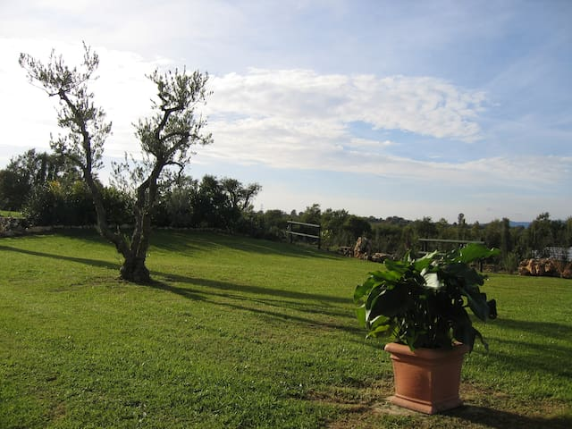 Agriturismo panoramico Saturnia - Manciano - Bed & Breakfast