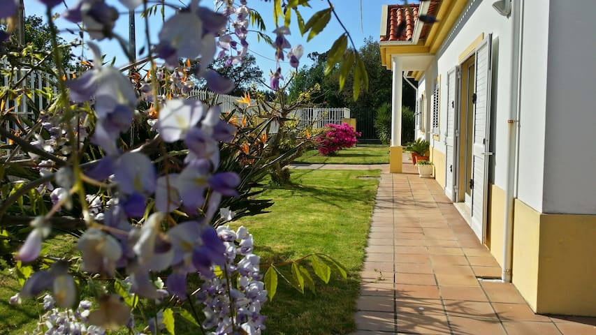 Country House near Aveiro - Eixo - Villa