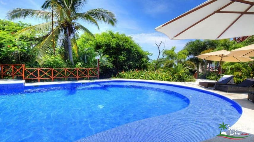 common area pools are the largest in Sayulita