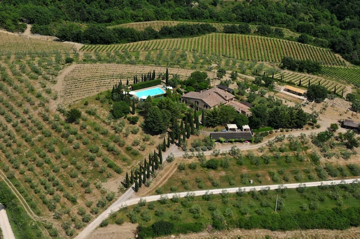 Sunny studio-aptm private garden - Castellina in Chianti - House