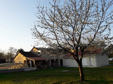 Maison équipée balnéothérapie et salle de sport
