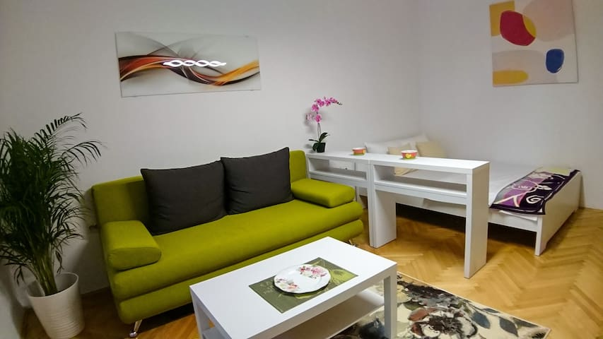 Newly renovated studio in the heart of Belgrade
