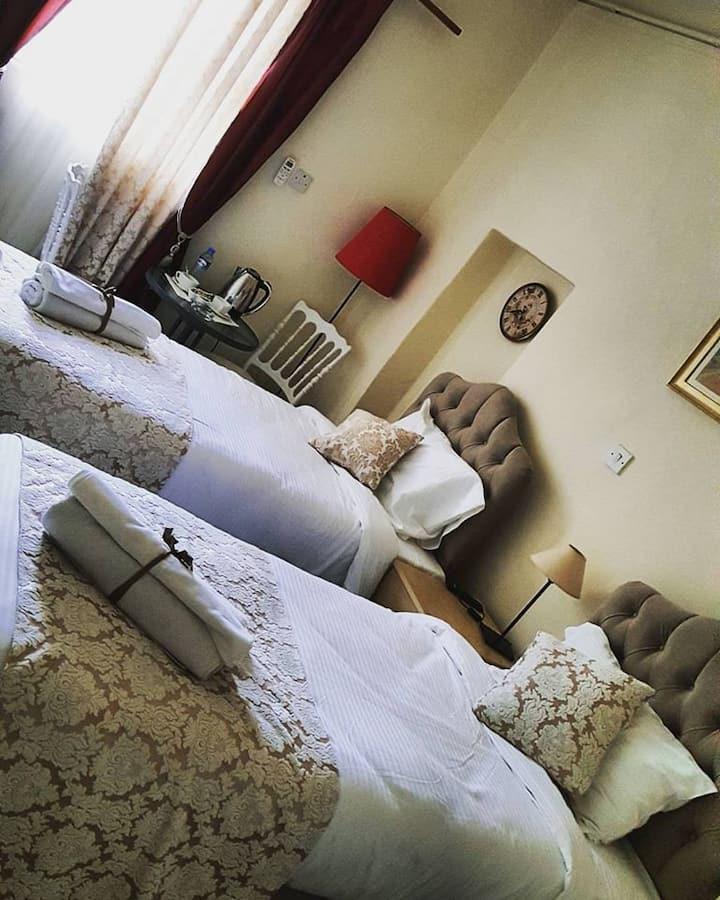101-Ekonomik İki Yataklı Oda